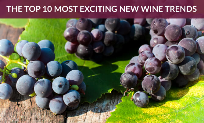 10 Most Exciting New Wine Trends