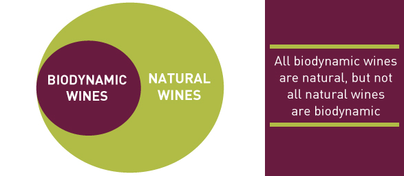 Biodynamic vs Natural Wines