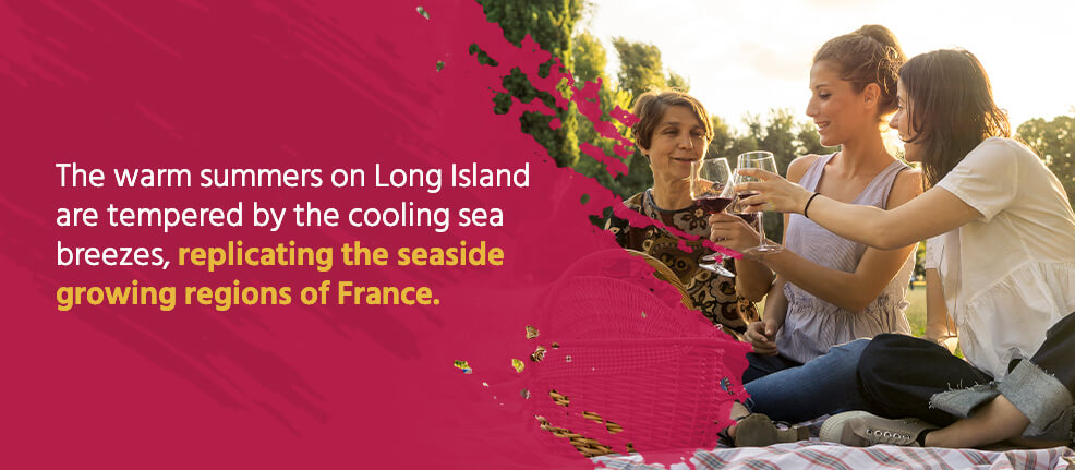 Warm summers on Long Island with cooling sea breezes replicate the seaside growing regions of France