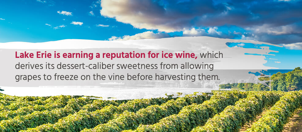 Lake Erie is earning a reputation for ice wine, which derives its dessert-caliber sweetness from allowing grapes to freeze on the vine before harvesting them