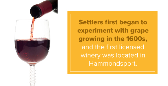 Settlers first began to experiment with grape growing in the 1600s