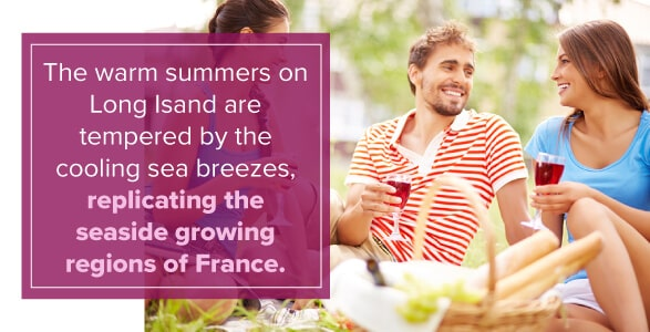Warm Summers on Long Island Similar to Seaside Growing Regions of France