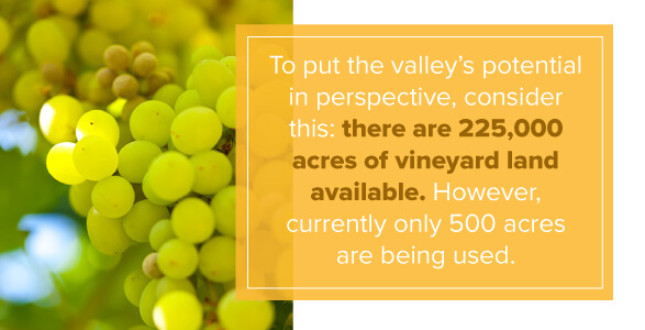 In Hudson River Valley, there are 225,000 acres of vineyard land with only 500 acres being used.