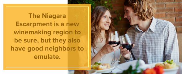 The Niagara Escarpment is a new Winemaking Region on NY