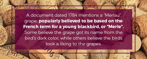 "A document dated 1784 mentions a ""Merlau"" grape, popularly believed to be based on the French term for a young blackbird or Merle"""
