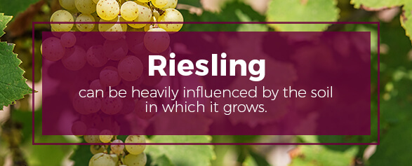 Riesling can be heavily influenced by the soil in which it grows