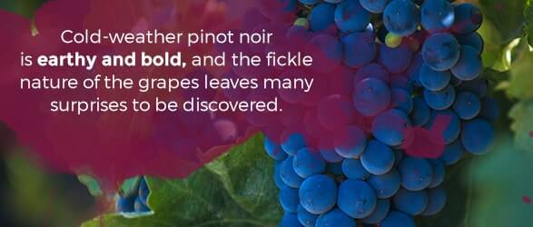 Cold-weathered pinot noir is earthy and bold, and the fickle nature of the grapes leaves many surprises to be discovered.