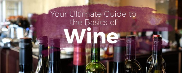 Your Ultimate Guide to the Basics of Wine