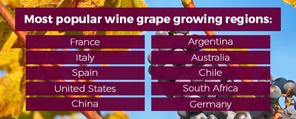 The most popular wine grape growing regions are: France, Italy, Spain, U.S., China, Argentina, Australia, Chile, South Africa, and Germany.