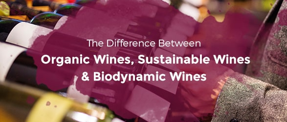 The Difference Between Organic Wines, Sustainable Wines and Biodynamic Wines