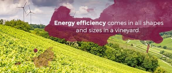 Energy efficiency comes in all shapes and sizes in a vineyard.