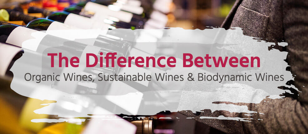 The Difference Between Organic Wines, Sustainable Wines & Biodynamic Wines