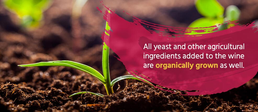 All yeast and other agricultural ingredients added to the wine are organically grown as well.