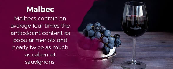 Malbecs contain on average four times the antioxidant content as popular merlots and nearly twice as much as cabernet sauvignons.