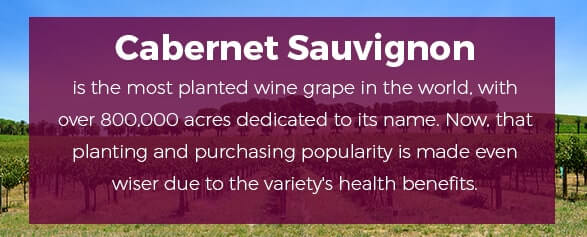 Cabernet Sauvignon is the most planted wine grape in the world, with over 800,000 acres dedicated to its name. Now, that planting and purchasing popularity is made even wiser due to the variety's health benefits.
