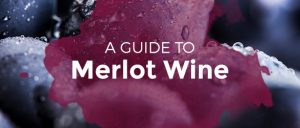 A Guide to Merlot Wine