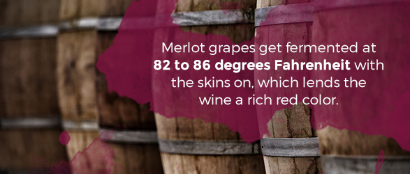 Merlot grapes get fermented at 82 to 86 degrees Fahrenheit with the skins on, which lends the wine a rich red color.