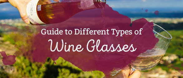 Guide to the Different Types of Wine Glasses
