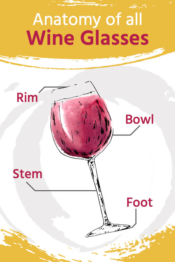 Anatomy of All Wine Glasses: Rim, Bowl, Stem and Foot
