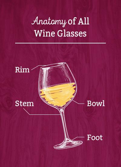Anatomy of All Wine Glasses: Rim, Bowl, Stem, and Foot
