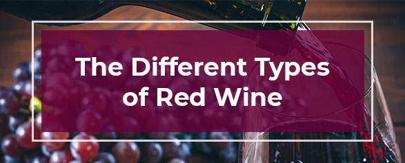 The Different Types of Red Wines