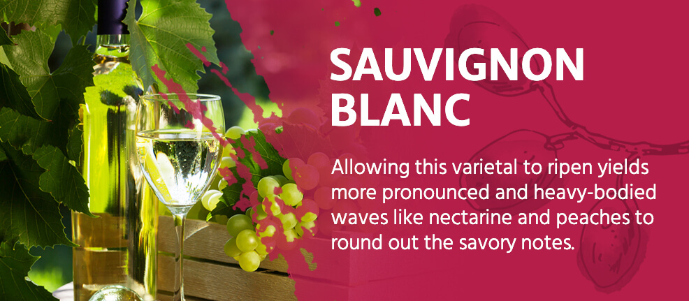 Sauvignon Blanc: This varietalyields more pronounced and heavy-bodied waves like nectarine and peach to round out the savory notes.
