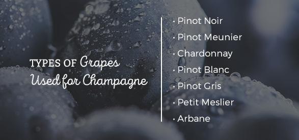 Types of grapes used for champagne: Pinot Noir, Pinot Meunier, Chardonnay, Pinot Blanc, Pinot Gris, Petit Meslier, Arbane