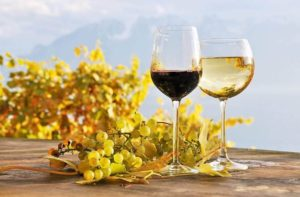 How Does a Wine Tasting Work?