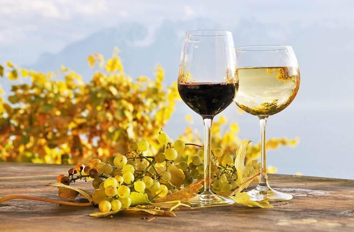 Cinco de Mayo Wines