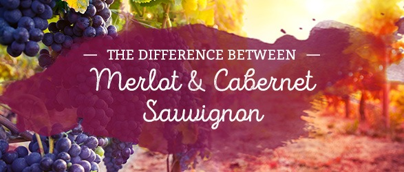 The Difference Between Merlot and Cabernet Sauvignon
