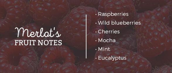 Merlot's Fruit Notes: Raspberries, Wild blueberries, Cherries, Mocha, Mint, and Eucalyptus