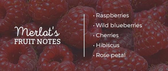 Merlot's Fruit Notes: Raspberries, Wild blueberries, Cherries, Hibiscus, Rose petal