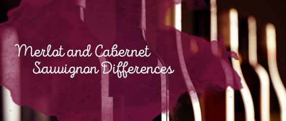 Merlot and Cabernet Sauvignon Differences