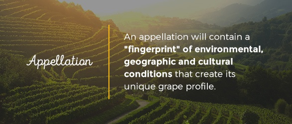 """An appellation will contain a """"fingerprint"""" of environmental, geographic and cultural conditions that create its unique grape profile."""