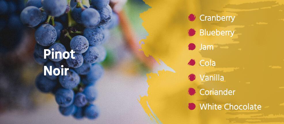 Pinot Noir tasting notes: Cranberry, Blueberry, Jam, Cola, Vanilla, Coriander, and White Chocolate