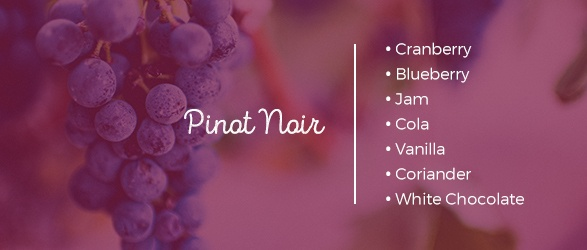 Pinot Noir tasting notes: Cranberry, Blueberry, Jam, Cola, Vanilla, Coriander, and White Chocolate