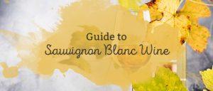 Guide to Sauvignon Blanc Wine
