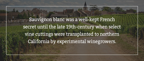 Sauvignon blanc was a well-kept French secret until the late 19th-century when select vine cuttings were transplanted to northern California by experimental winegrowers.