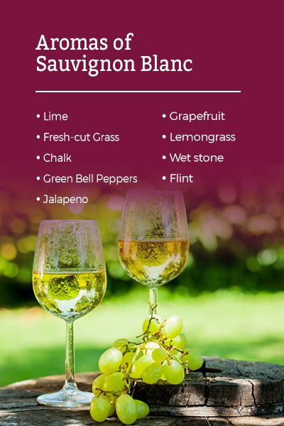 Aromas of Sauvignon blanc wine