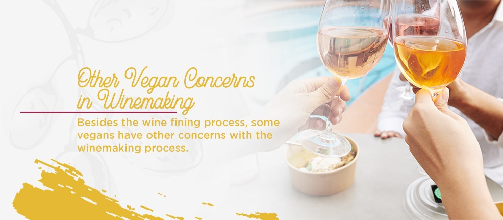 Other Vegan Concerns in Winemaking. Besides the wine fining process, some vegans have other concerns with the winemaking process.